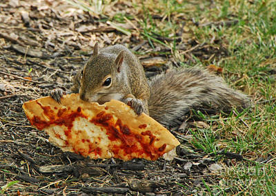 Pizza For  Lunch Art Print by Mary Carol Story