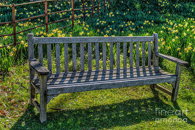 Daffodils Photograph - Place To Rest by Adrian Evans