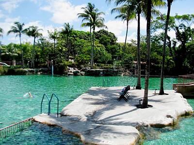 Palms Photograph - Place To Swim   by Zina Stromberg