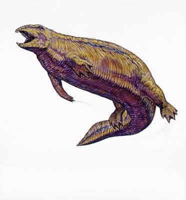 Triassic Photograph - Placodus Prehistoric Marine Reptile by Deagostini/uig