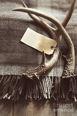 Photograph - Plaid Wool Blanket With Antlers And Tag by Sandra Cunningham