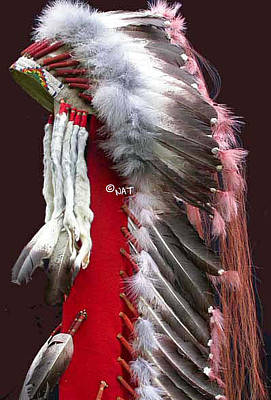 Cheyenne Headdress Mixed Media - Plains Indian Trailer Headdress by Native Arts Trading