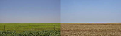 Photograph - Plains by Skip Hunt