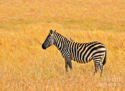 Zebra Digital Art - Plains Zebra Equus Quagga In Red Oat Grass by Liz Leyden