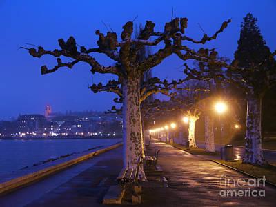 Vevey Photograph - Plane Trees And Lake Geneva, Vevey by Adam Sylvester