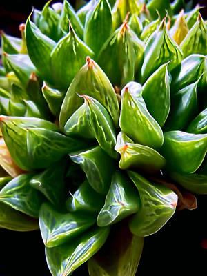 Photograph - Plant 51 by Dawn Eshelman