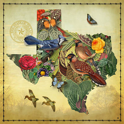 University Wall Art - Painting - Nature Map Of Texas by Gary Grayson