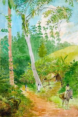 Donkey Digital Art - Plantain Walk Watchman And Hut by William Berryman