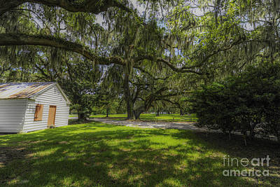 Photograph - Plantation Grounds by Dale Powell