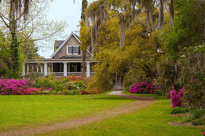 Beers On Tap - Plantation House by Allyson Jones