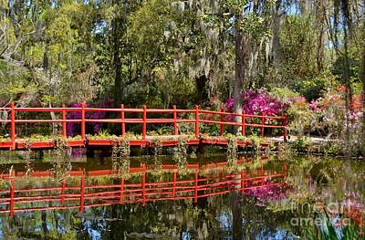 Photograph - Plantation Reflecting Bridge by Kathy Baccari