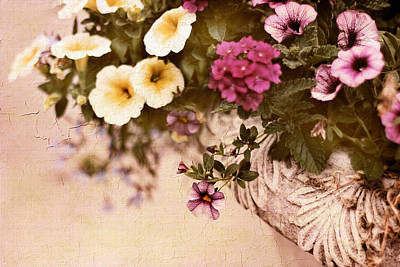 Planter Wall Art - Photograph - Planter by Jessica Jenney