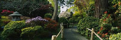 Plants In A Garden, Japanese Tea Art Print