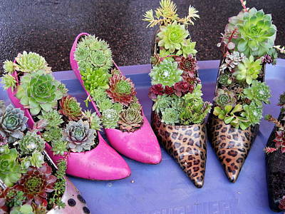Photograph - Plants In Pumps by Kent Lorentzen