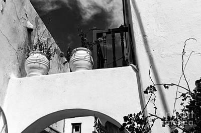 Photograph - Plants On The Ledge In Mykonos Mono by John Rizzuto