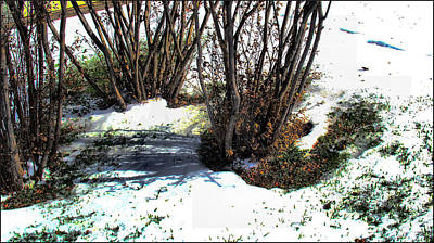 Photograph - Plantsnowscape 2009 by Glenn Bautista