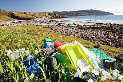 Plastic Rubbish At The Singing Sands Print by Ashley Cooper