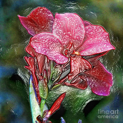Photograph - Plastic Wrapped Pink Flower By Diana Sainz by Diana Raquel Sainz