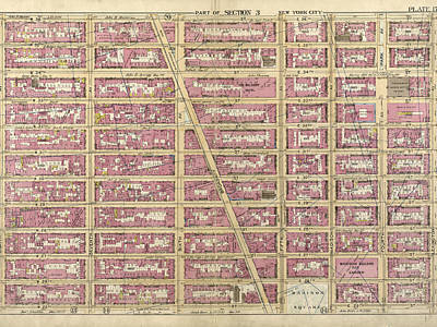 Lexington Drawing - Plate 17 Bounded By W. 36th Street, E. 36th Street by Litz Collection