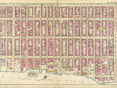 Lexington Drawing - Plate 21 Bounded By Lexington Avenue by Litz Collection