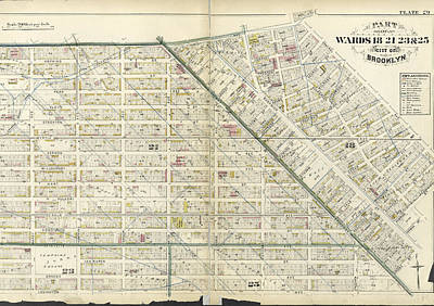 Lexington Drawing - Plate 29 Bounded By Flushing Avenue, Central Avenue, Himrod by Litz Collection