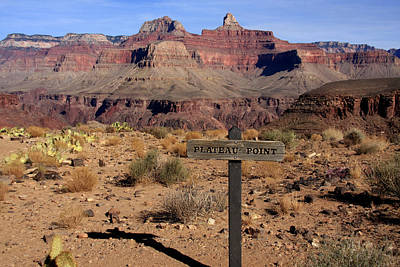 Photograph - Plateau Point Grand Canyon by Aidan Moran