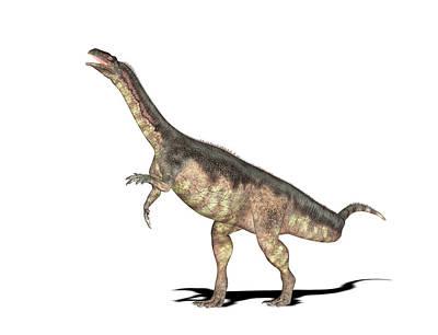 Triassic Photograph - Plateosaurus Dinosaur by Friedrich Saurer