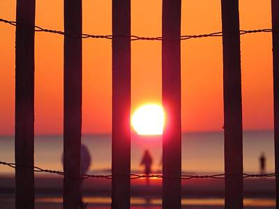 Art Print featuring the photograph Play Through The Fence by Nikki McInnes