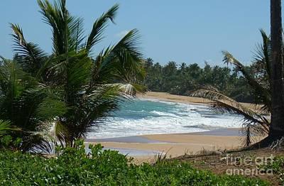 Photograph - Playa En Pinones by Iris  Mora