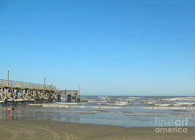 Photograph - Playing At Surfside Pier by Connie Fox