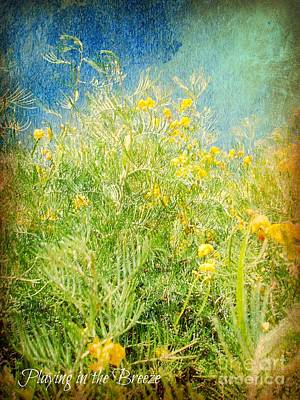 Photograph - Playing In The Breeze by Janice Sakry