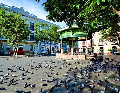 Photograph - Plaza De Armas by Ricardo J Ruiz de Porras