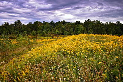 Photograph - Pleasant Meadow Foreboding Sky by Frozen in Time Fine Art Photography