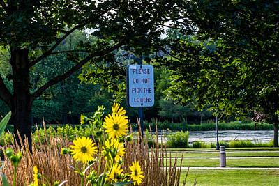 Please Do Not Pick The Flowers Art Print by Randy Scherkenbach