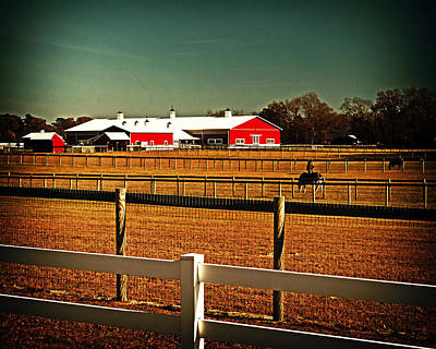 Photograph - Please Don't Fence Me In by Bill Swartwout Fine Art Photography