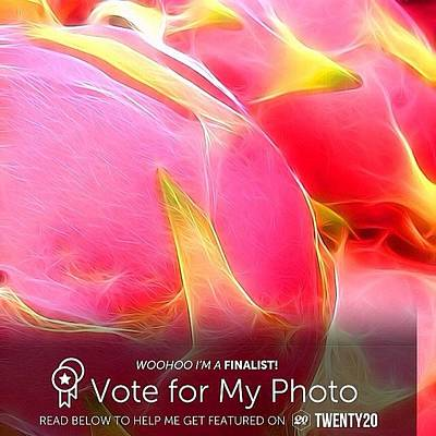Photograph - Please Help Me Win The Pink Challenge by Kathleen Messmer