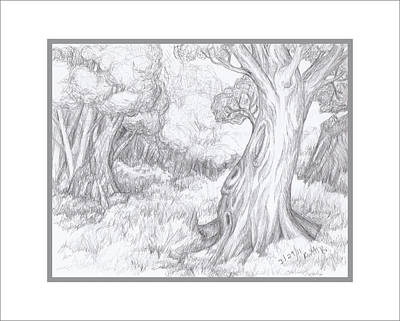 Drawing - Pleasent Place In The Woods by Ruth Renshaw