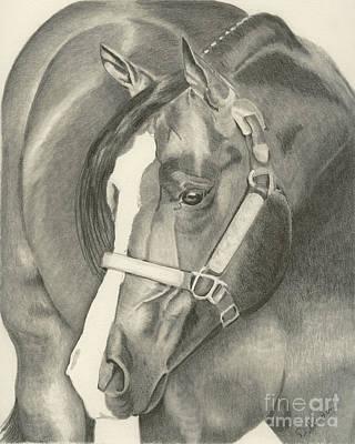 Pleasure Horse Print by Denise Gordon
