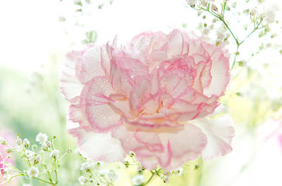 Floral Composition Photograph - Plenty Of Joy And Sun. Natural Watercolor. Touch Of Japanese Style by Jenny Rainbow