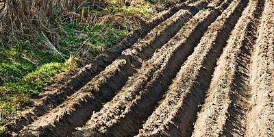 Photograph - Ploughed Field by Jane McIlroy