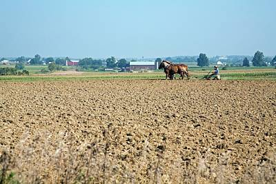 Amish Photograph - Ploughing On An Amish Farm by Jim West