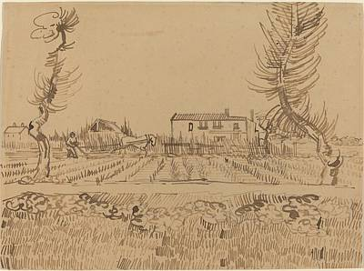 Farm Fields Drawing - Ploughman In The Fields Near Arles by Vincent van Gogh
