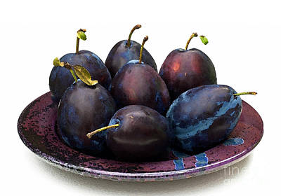 Photograph - Plum Delicious by Barbara McMahon