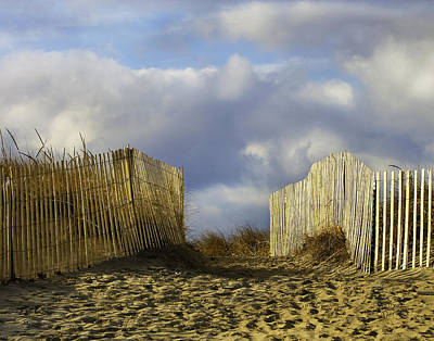 Art Print featuring the photograph Plum Island Fence by Betty Denise