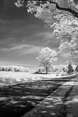 Photograph - Plum Run Ir0050 by Guy Whiteley