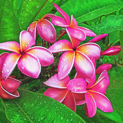 Digital Art - Plumeria After The Raiin by Jane Schnetlage