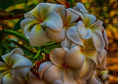 Painting - Plumeria Bunch by Omaste Witkowski