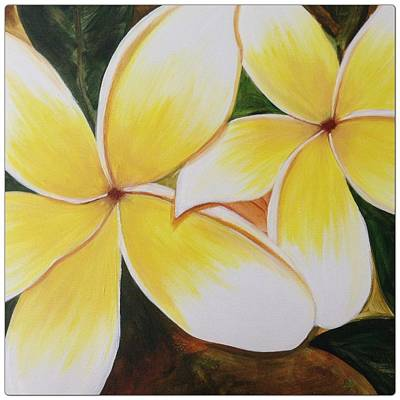 Florals Photograph - Plumeria by Go Inspire Beauty