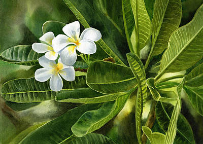 Fragipani Painting - Plumeria Leaves by Sharon Freeman