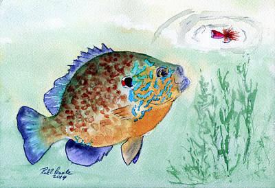 Panfish Painting - Plump Pumpkin Seed Sunfish by Paul Temple